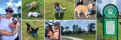 Bridgewater Dog Park Grand Opening Is PAWsome!