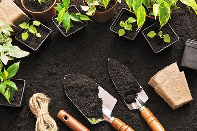 Bridgewater's Community Garden is Planted!